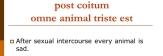 post+coitum+omne+animal+triste+est